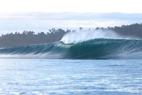 JIWA UNLEASHED SURFER (1)