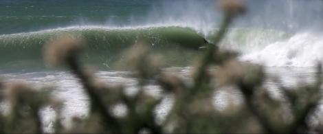 Autumn Anticipation 2 UNLEASHED SURFER
