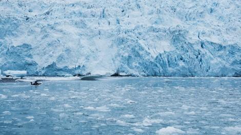 16_Alaska_29